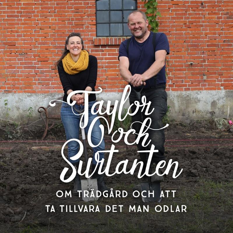 Taylor & Surtanten